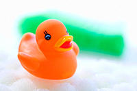 Rubber duck floating on soapsud