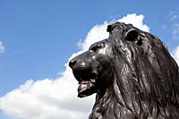 Lion statue at Nelson's column, London