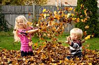 A girl, 5-10 and and a toddler play in a pile of leaves in the fall