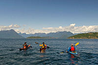 A group of adult kayakers makes their way north past Sarah point, north of Lund in the upper Sunshine coast of the Vancouver coast and mountain range,...