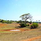 Pinar del Río Province, Cuba
