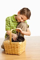 A Boy Petting A Rabbit In A Basket