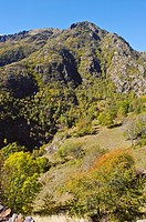 Vall de Cardós, Parque Natural del Alto Pirineo, Lleida province, Catalonia, Spain