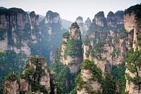 Hunan,Zhangjiajie National Forest Park,Zhangjiajie,Beauty in Nature,Mt Tianzi,Mount Tianzi,