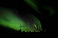 Swirling Northern Lights, Polar Lights, Aurora Borealis, green, near Whitehorse, Yukon Territory, Canada