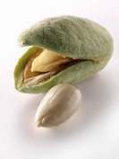 Fresh almonds (thumbnail)