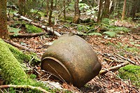 Pemigewasset Wilderness - Artifacts at the Old Johnson Camp, which was a old logging camp along the East Branch & Lincoln Railroad in the Liberty Broo...