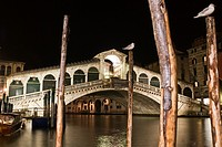 Rialto bridge at night, Venice, Italy, Europe