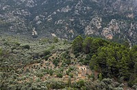 Spain, Majorca, Balearics, view of mountain
