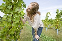Mid adult woman in vineyard with vines