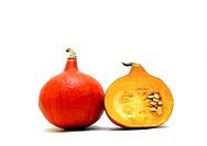 Hokkaido / pumpkin cucurbita