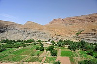 Dades river oasis, Dades Valley with mountains, geological escarpment landscape, High Atlas, Southern Morocco, Morocco, Africa