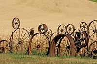 Wagon wheel fence with wheat field in background. Palouse, Whitman County, Washington State, USA