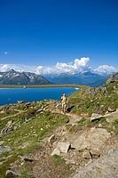 20_30 Jahre, Alpen, Aufstieg, Aussicht, Berge, Berggipfel, Berglandschaft, Bergluft, Bergsommer, Bergwanderung, Erfolg, Erholungsgebiet, Ferienregion,...