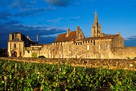 Romanesque church, Malet de Roquefort House and Belltower of Monolithic church  St  Emilion Dordogne Valley. Bordeaux, Aquitaine, France.