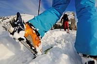 Cross country skiers on Steinplatte Mountain, Reit im Winkl, Chiemgau, Upper Bavaria, Germany, Europe
