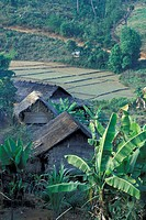 Thailand, Northern Thailand, Mae Hong Son, Farm house