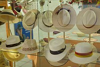 Store display of traditional Panama Hats made of straw from toquilla plant, Cuenca, Ecuador.