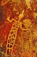 USA, California, Little Petroglyph Canyon, Ridgecrest. Close_up of an ancient petroglyph. Credit: Dave Welling / Jaynes Gallery / DanitaDelimont.com