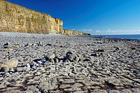 Rocky Beach at Llantwit Major, the Glamorgan Heritage Coast, Glamorgan, South Wales, UK