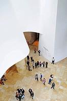 Guggenheim Museum, Bilbao, Bizkaia province, Pais Vasco, Basque Country, Spain, Europe