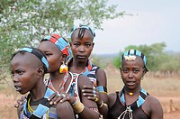 Young girls from the Hamar tribe in the initiation ritual leap over the cattle, southern Omo valley, Ethiopia, Africa