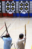 Archers firing arrows at the targets
