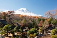 Japan, Mount Fuji, Oshino Village, Masuno-Ya Garden.