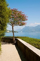 A view from the garden  Isola Madre Lago Maggiore Italy