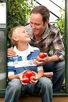 Smiling father and son picking ripe tomatoes in greenhouse garden