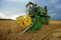 Combine-harvester on a field of wheat