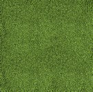 The texture of the herb cover sports field. It is used in baseball
