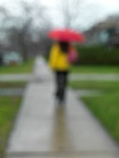 Woman with an umbrella on a sidewalk in the rain, blurred