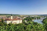 Schloss Horneck Castle above Gundelsheim am Neckar, Neckar River, Baden-Wuerttemberg, Germany, Europe