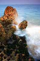 Incoming wave breaking on an outcrop of rock, Tenby, Pembrokeshire, Wales