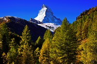 Alps, Alpine panorama, view, tree, mountain, mountains, mountain panorama, mountain point, trees, cliff, rock, mountains, summit