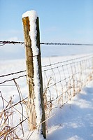 Farm field fence and post coated with snow