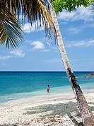 Beach near Pointe_Noire, west coast of Basse_Terre, Guadeloupe, French Antilles, Lesser Antilles, Caribbean