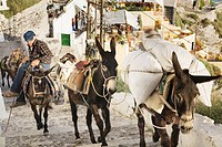 Farmer driving his mules through the steep streets of Fira, Santorini, Cyclades, Greece, Europe