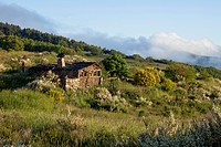 Landscape near Manjarin, near Ponferrada, Camino Frances, Way of St. James, Camino de Santiago, pilgrims way, UNESCO World Heritage, European Cultural...