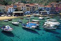 Harbour city, Boats, Giglio Porto, Isola del Giglio, Tuscany, Italy
