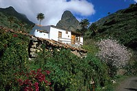 Country house, vallye of Bechijigua, Roque Agando, La Gomera, Canary Islands, Spain