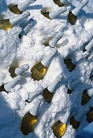 Champangne bottles in the snow, Ruefikopf bei Lech, Arlberg, Tyrol, Austria, Europe