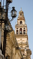 Bell tower of Cordoba Cathedral  Old Mosque  Andalusia  Spain