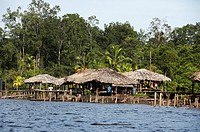 WARAO´S HOUSE ON PILES, INDIANS LIVING IN ORINOCO DELTA, VENEZUELA
