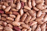Indian Food Rajma , Kidney Beans