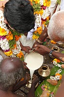 Milk as an offering, Thaipusam festival in Tenkasi, Tamil Nadu, Tamilnadu, South India, India, Asia