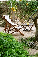 DECKCHAIRS UNDER LEMON TREES