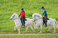 Two young riders riding on Iceland ponies