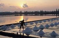 Thailand, Samut Songkhram province, Salt flats, Salt harvest.